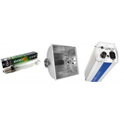 Kit, Gavita 600W Lighting Electronics - E