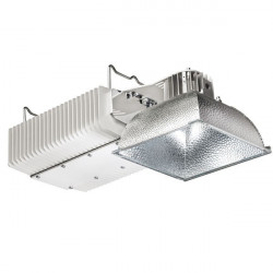 Lampe Plasma Lep 300W 41.01 (Floraison) - Gavita