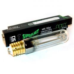 Ampoule 150W HPS Agro - Superplant lampe sodium douille E40, spécial croissance floraison