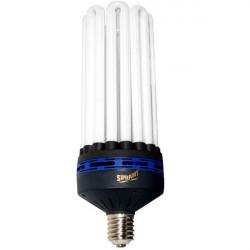 Ampoule CFL 200W Croissance 6400K - Superplant, douille E40