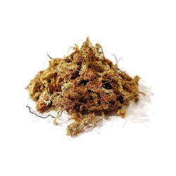 SPHAGNUM MOSS FROM CHILE 250G