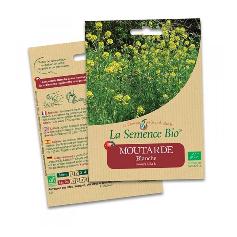 Organic Seeds - White Mustard