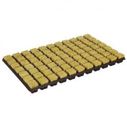 Plaque de 77 cubes de laine de roche fractionnable - Grodan , germination , bouturage