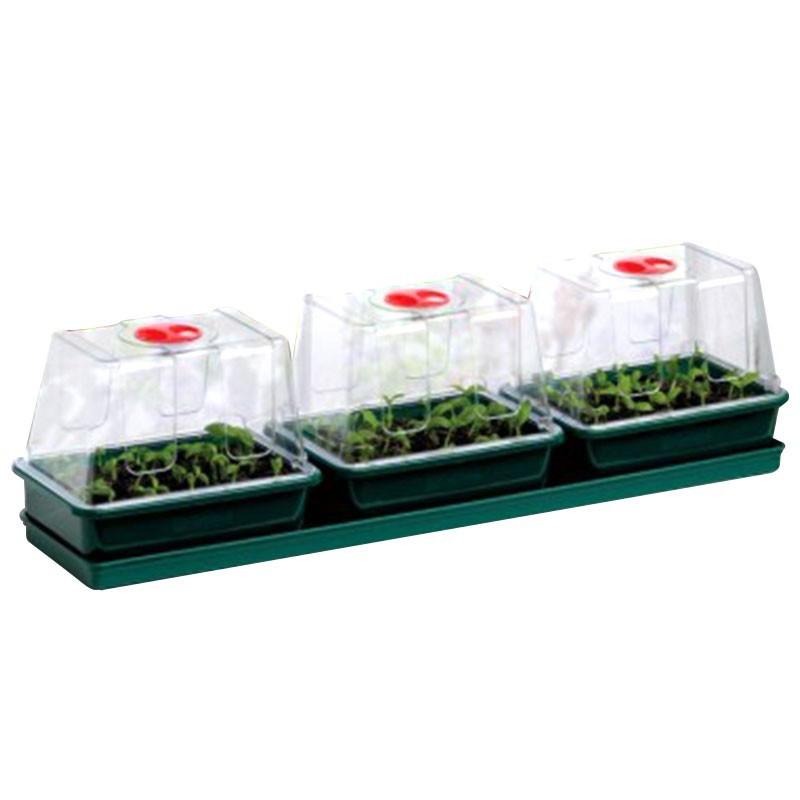 TRIO OF MINI GREENHOUSES 76X18.5X20.5