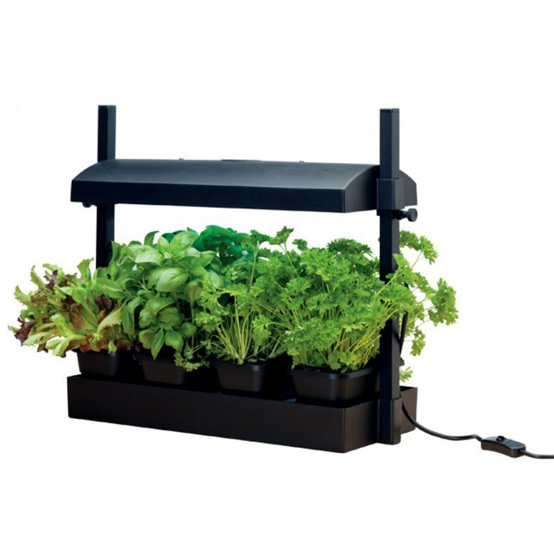 MICRO BLACK GARDEN WITH 11W LAMP