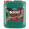 Accelerator Boost 5 L - Canna , a booster of flowering , hydro,soil,coco
