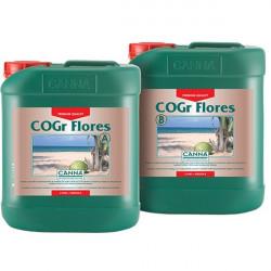 eengrais COGr Flores A et B (2 x) 5 L - Canna