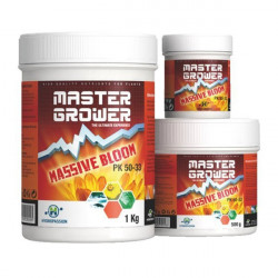 Massive Bloom 100 g - Hydropassion , a booster of flowering
