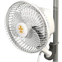MONKEY FAN SECRET JARDIN 16W UE