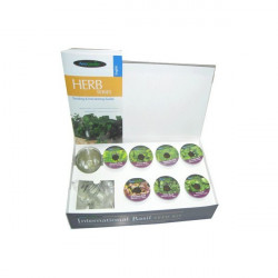 Kit Seeds Basil International