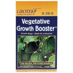 Grotek Végétative Grow 20 G , booster de croissance