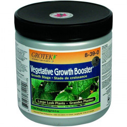 Grotek Growth Vegetative Booster 300 G , booster de croissance