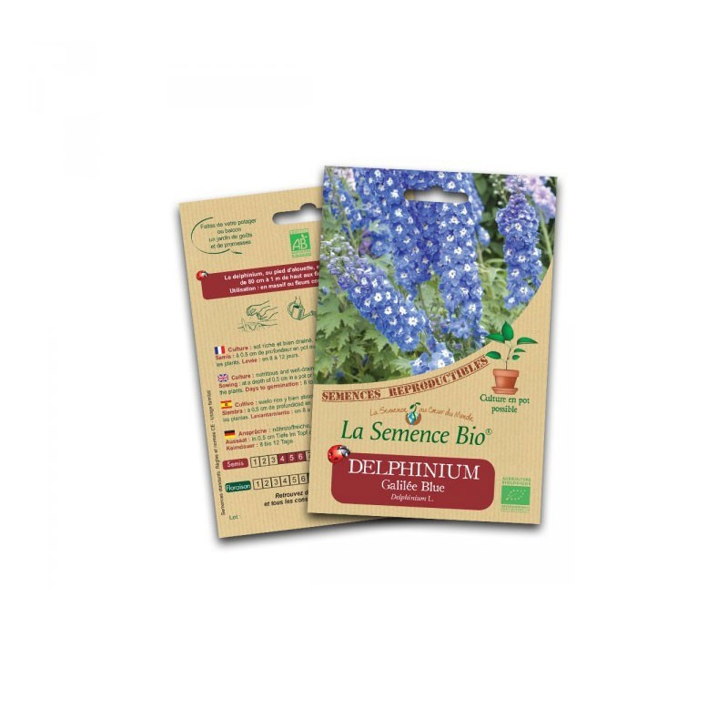 Graines Bio - Delphinium galilée blue - Organic Seed