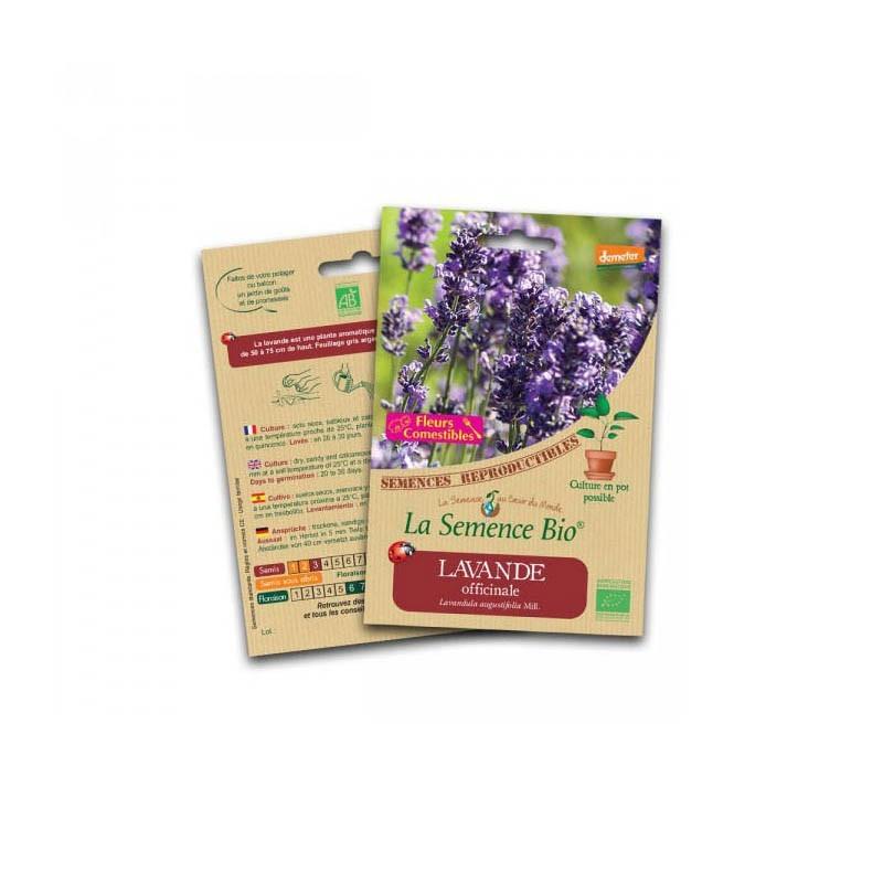 Organic Seeds - Lavender - Organic Seed