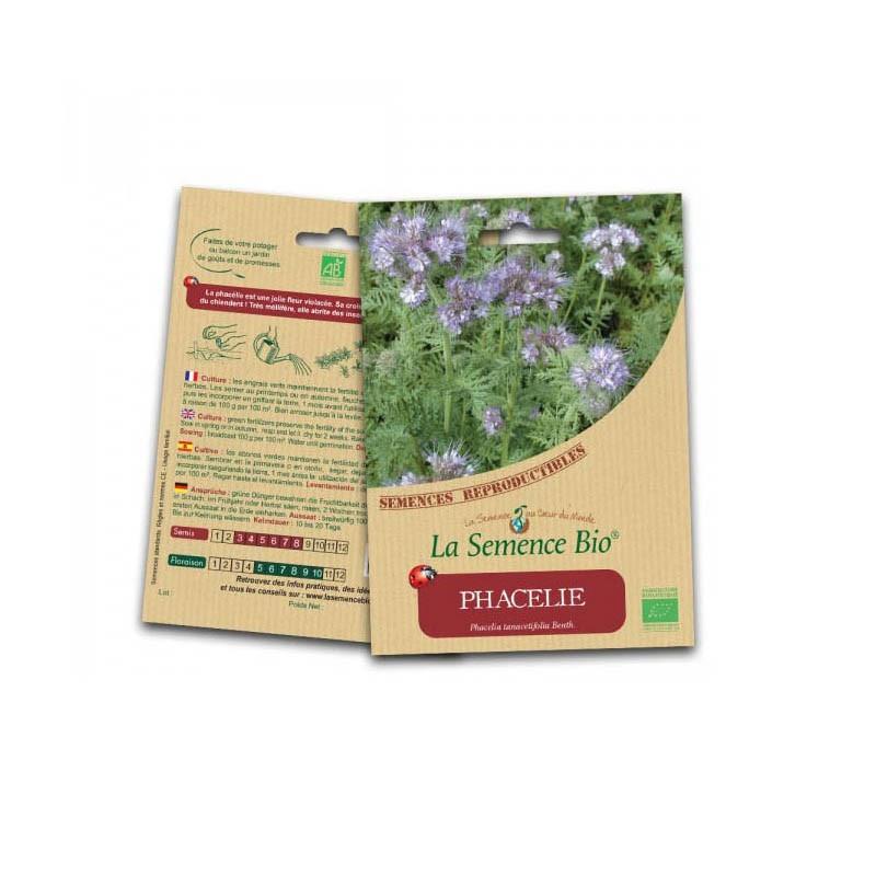 Graines Bio - Phacelie - Organic Seed