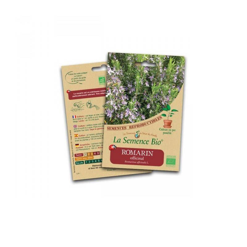 Graines Bio - Rosemary officinal - Organic seed