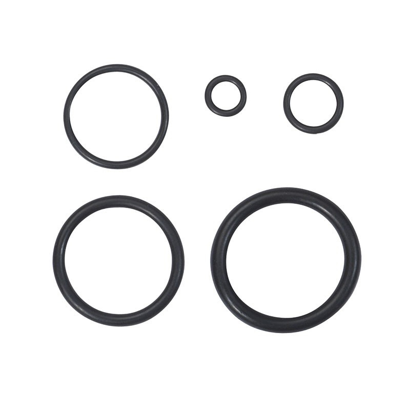 Set 225 gold O-rings in box - Ribitech