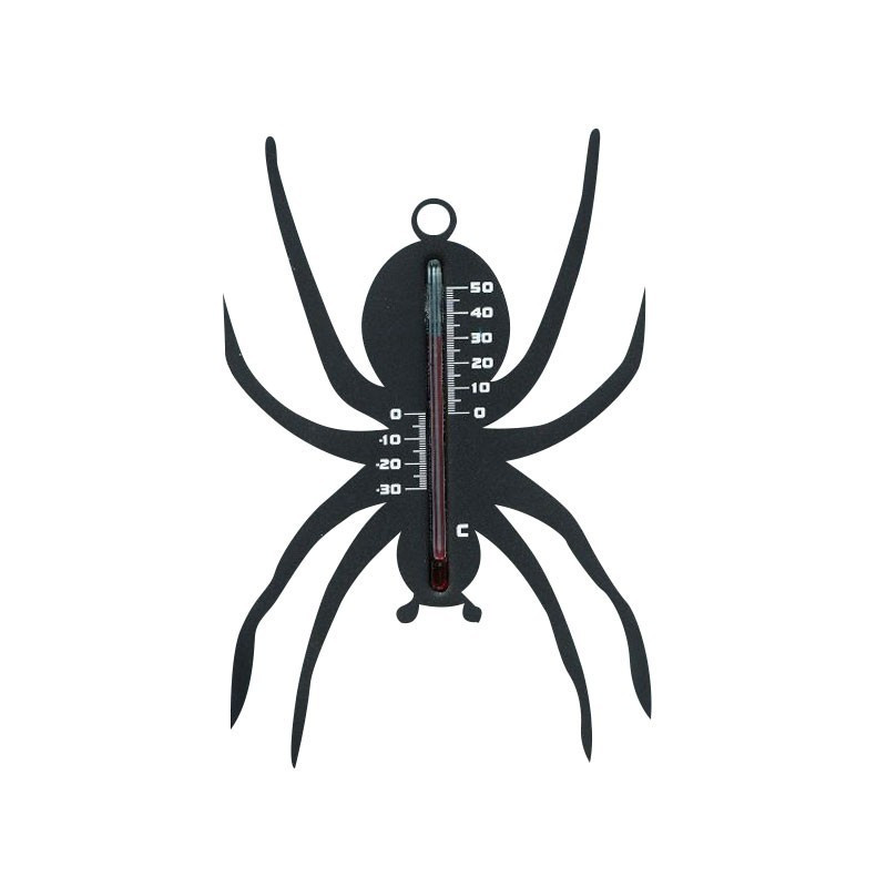 Outdoor wall thermometer in plastic - Spider - Black - H 15 X 10 X 0.3 cm - Nature