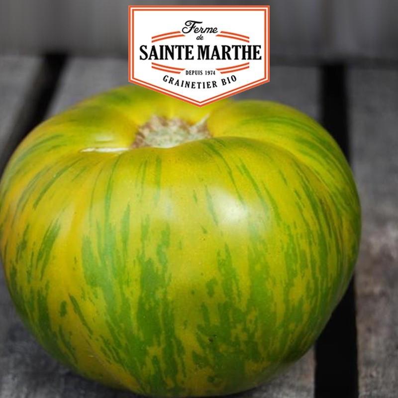 <x>La ferme Sainte Marthe</x> - 50 seeds Tomato Green Zebra