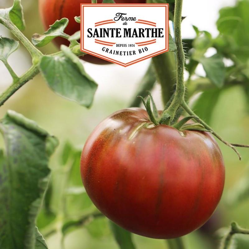 <x>La ferme Sainte Marthe</x> - 50 seeds Crimean Black Tomato