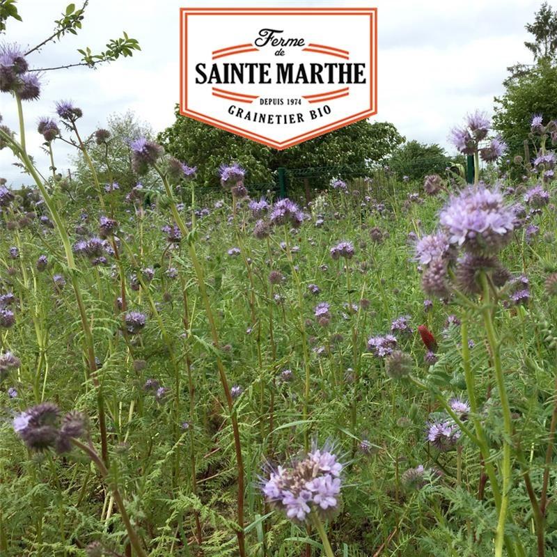 <x>La ferme Sainte Marthe</x> - 500 grams Annual Improver Blend