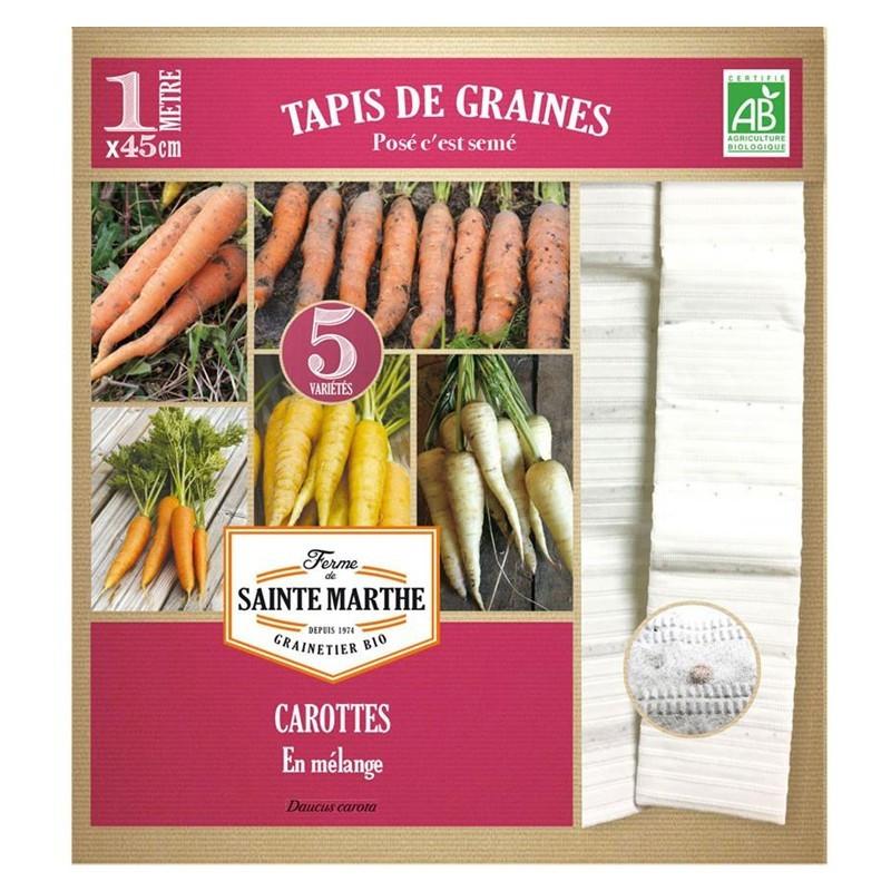 <x>La ferme Sainte Marthe</x> - 5 Row Mixed Carrot Carpets