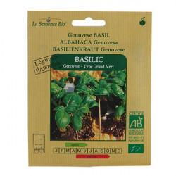 Graines Bio - Basilic Genovese - semence biologique