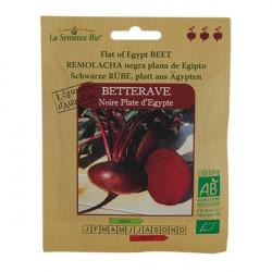 Organic seeds - Beet-Black-Flat Of egypt - seed organic