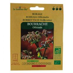 Graines Bio - Bourrache Officinale - semence biologique
