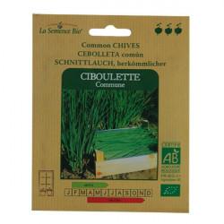 Graines Bio - Ciboulette Commune - semence biologique