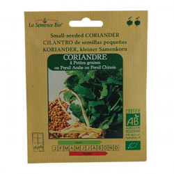 Graines Bio - Coriandre A Petites Graines - semence biologique