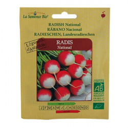 Organic seeds - Radish National - seed organic