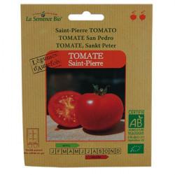 Organic seeds - Tomato-Saint-Pierre - seed organic