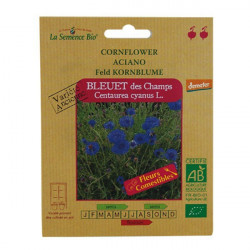 Organic seeds - Blueberry Fields - seed organic