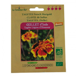 Organic seeds - Carnation Of India, Marigold - seed organic