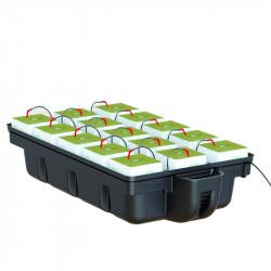 Hydroponic system - HydroStone 15 plants 110 x 60 x 28 cm - Platinium Hydroponics