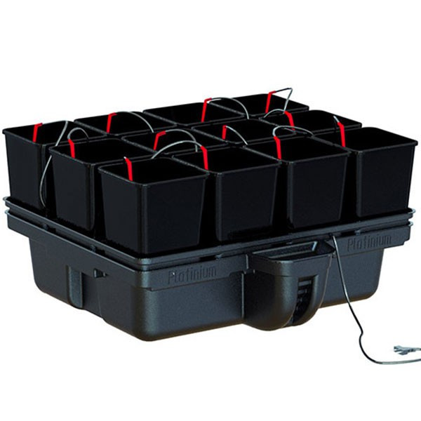 Hydroponic system - HydroStar 80 12 pots 80 x 75 x 39 cm - Platinium Hydroponics