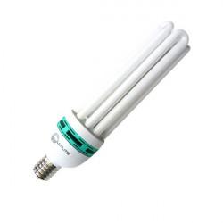 Ampoule CFL 125W 6400°K Croissance , lampe horticole croissance -douille E40