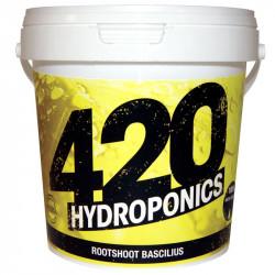 RootShoot Bascilius 1Kg - 420 hydroponics
