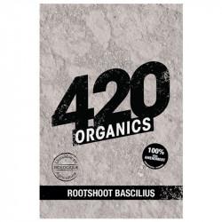 Poudre Rootshoot Bascilius 25g - 420 organics