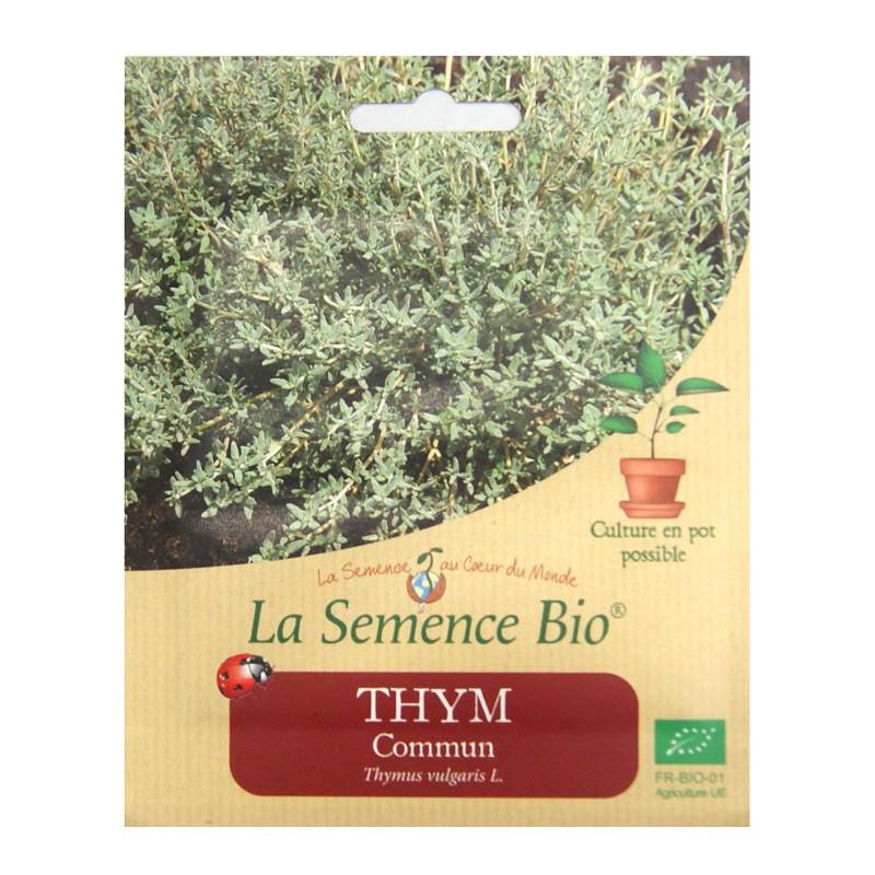 Organic Seeds - Common Thyme