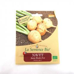Graines Bio - Navet Jaune Boule D'or