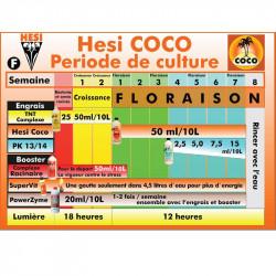 SCHEMA DE CULTURE HESI COCO