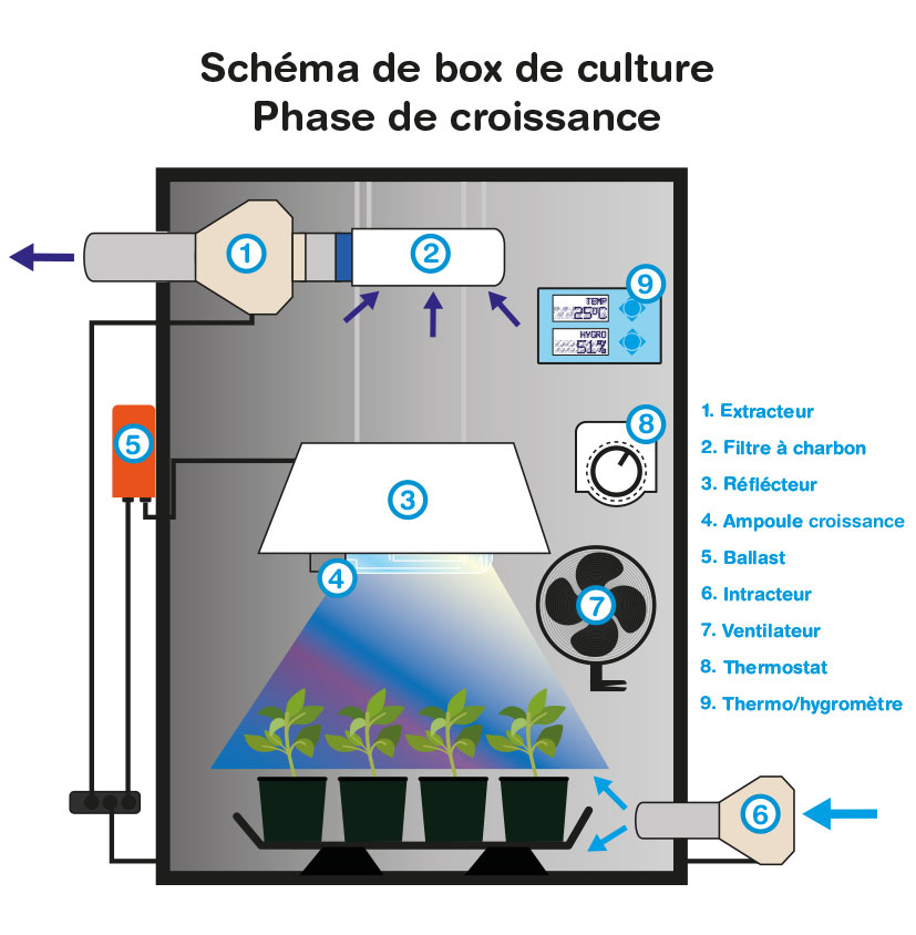 Box de culture indoor discount - Comment installer un extracteur dans une chambre de culture ...