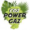 CO2 Power Gaz